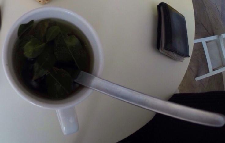 Chá de Coca - a salvação del soroche